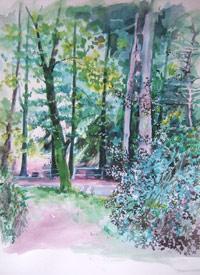Craig Lodge woods